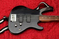 Washburn Xb120
